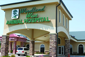 Woodland West Animal Hospital - Tulsa, OK