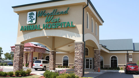 iM WoodlandWestAnimalHospital 082912 4 Resized